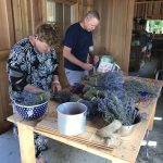 Uncle Paul helping put together lavender hand bouquets.